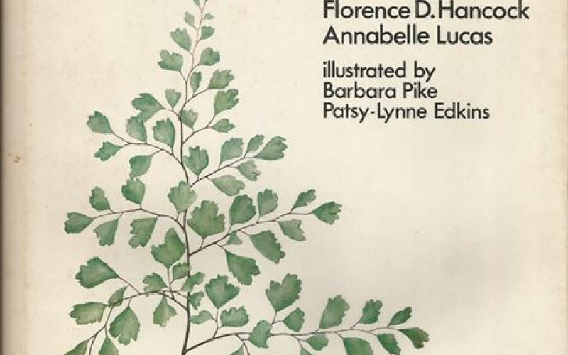 Front Cover of Ferns of the Witwatersrand by Florence D. Hancock & Annabelle Lucas