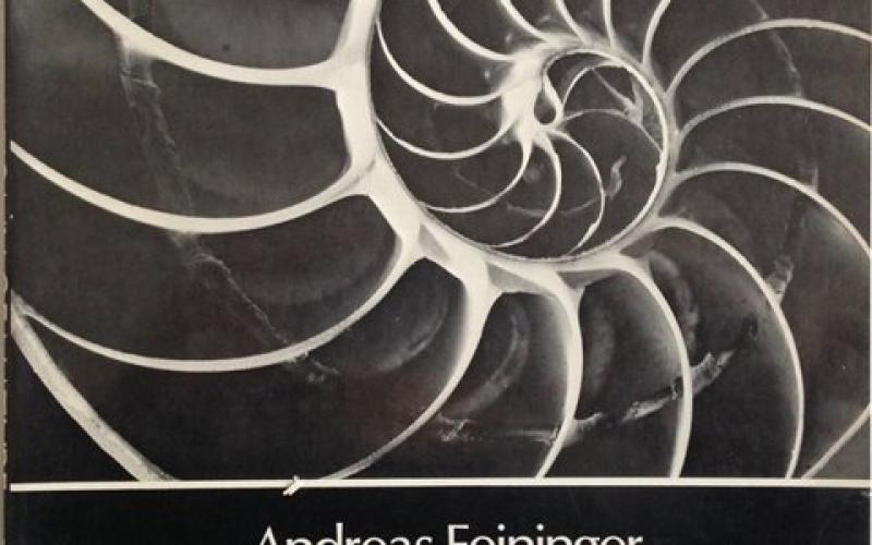 Front Cover of The Anatomy of Nature by Andreas Feininger