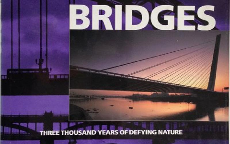 Front cover of Bridges by David J Brown
