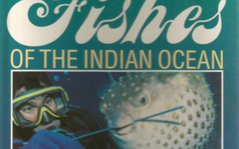 Front Cover of Underwater Guide to Coral Fishes of the Indian Ocean by Brent Addison and Jeremy Tindall