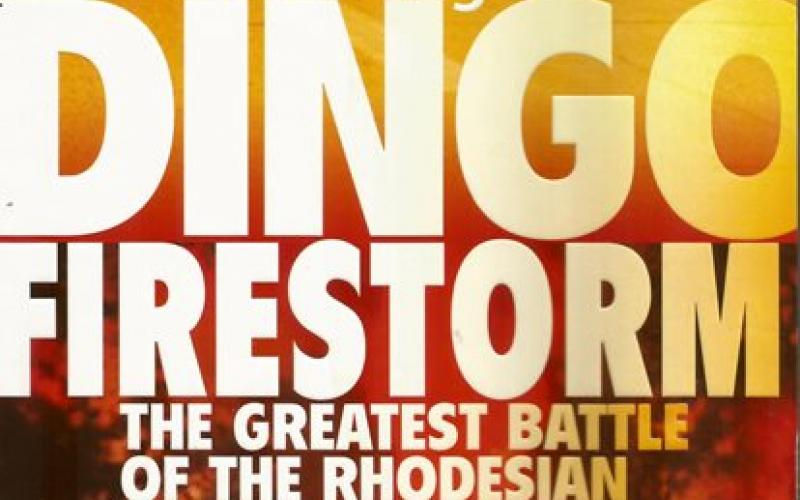 Front cover of Dingo Firestorm by Ian Pringle