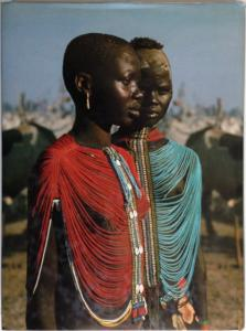 Back Cover of Africa Adorned by Angela Fisher