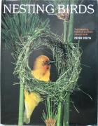 Front cover of Nesting Birds by Peter Steyn