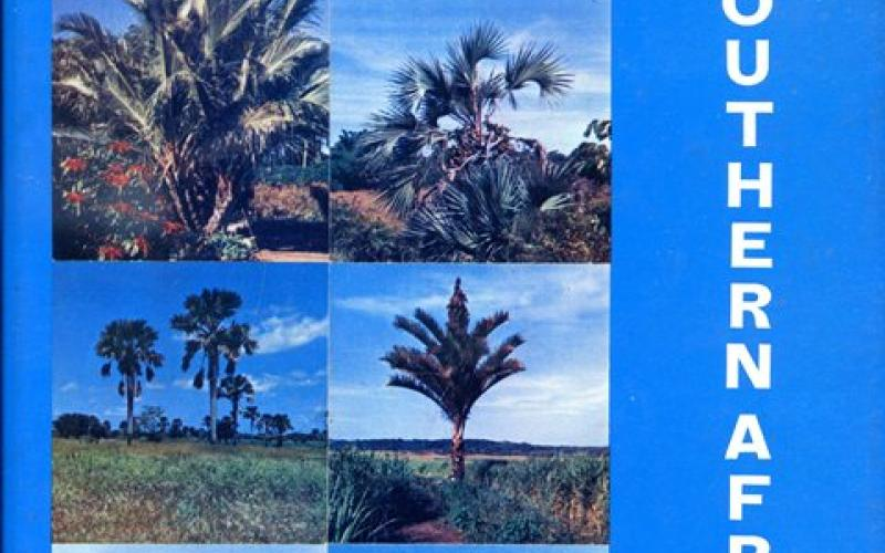 Front cover of The Indigenous Palms of Southern Africa by Hein Wicht